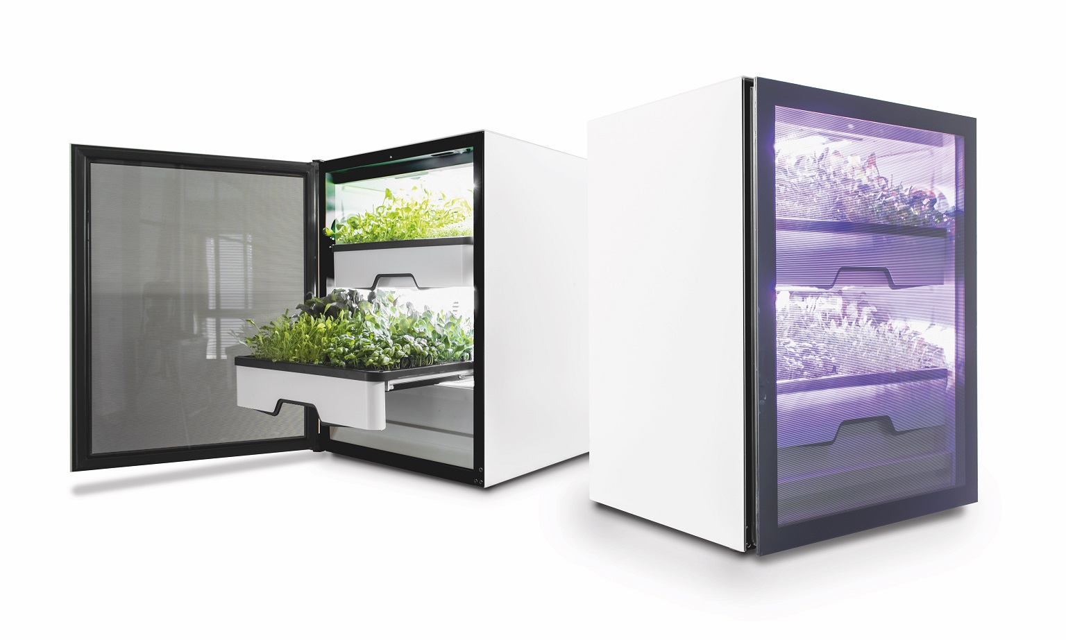Vertical Farming OEM